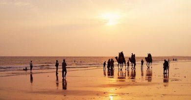 mandvi beach kutch