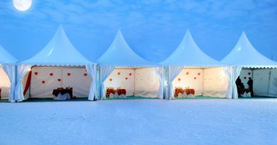 Rann Mahotsav Tour Packages