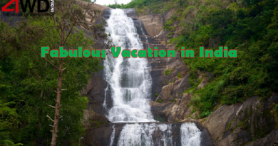 Fabulous Vacation in India