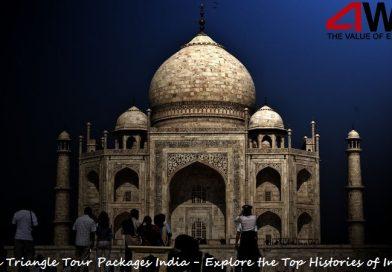 بسته های تور سه گانه طلایی هند - کاوش در تاریخ بالا هند