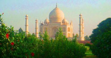 Paradise Garden of Agra