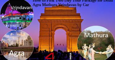 delhi agra mathura vrindavan tour by car