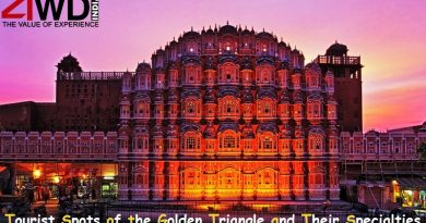 specialties of golden triangle